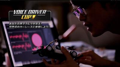 VOICE DRIVER